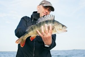 holding perch with watch on left wrist