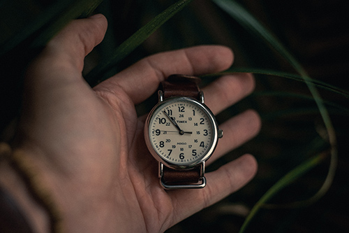 hand holding timex men's watch