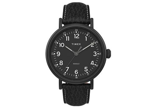 Timex Standard XL 43mm